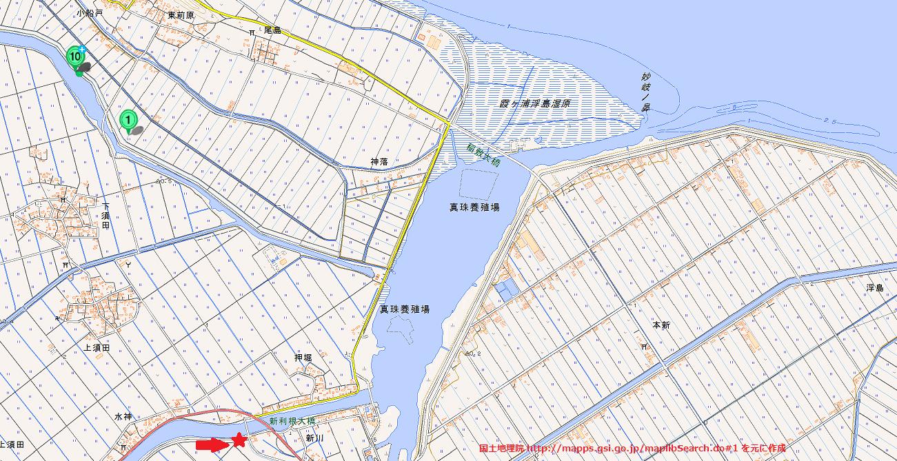 霞ヶ浦のスノヤワラでのバス釣り