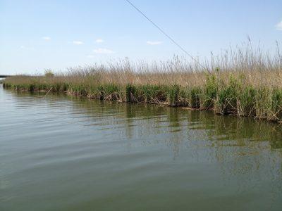 洲の野原の妙岐水道