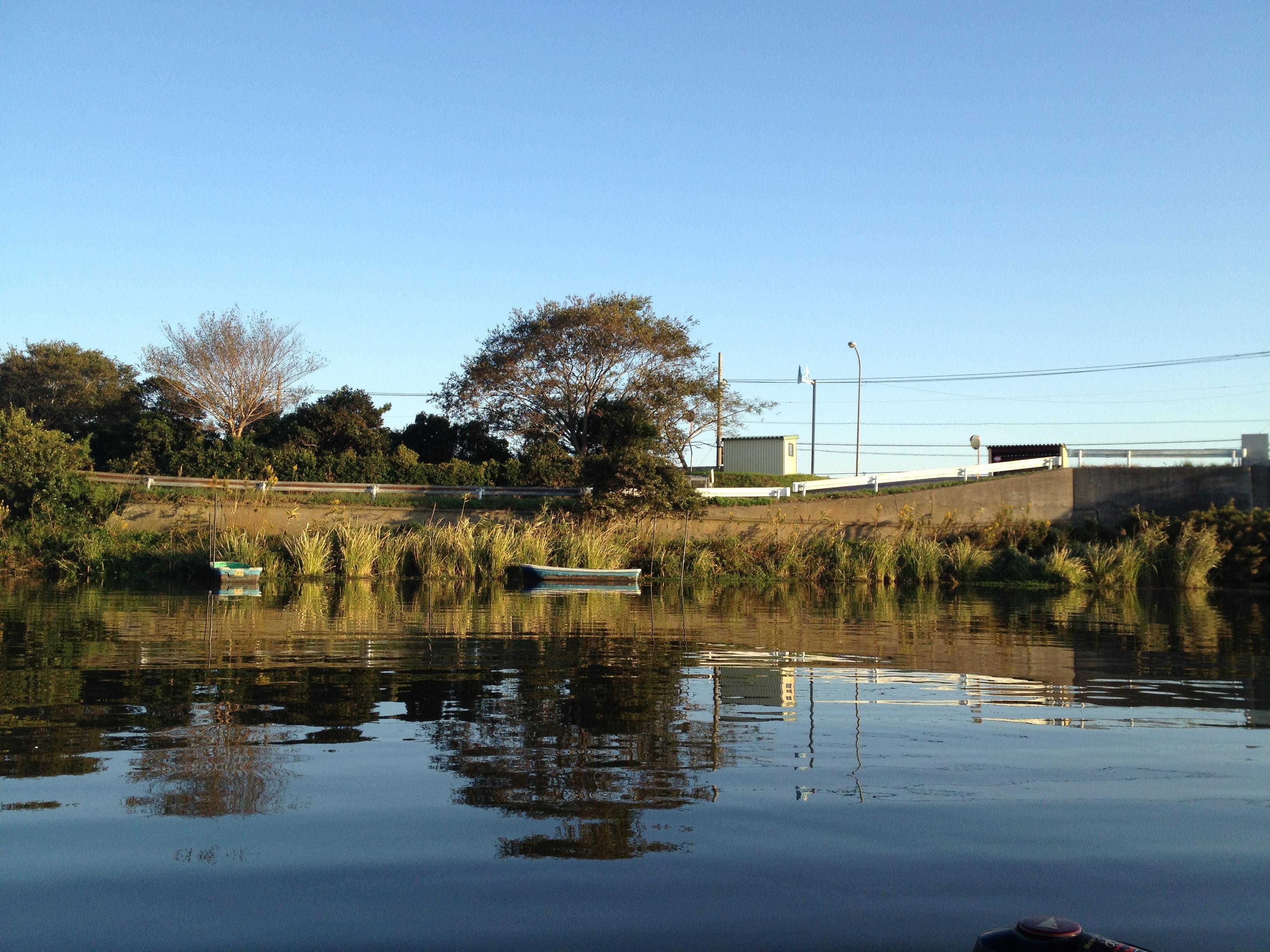 OSPと新利根川