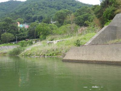 津久井湖で落水
