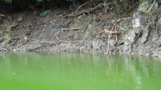 津久井湖で修行