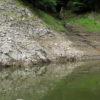 大減水の津久井湖