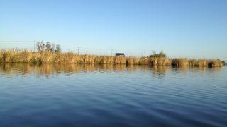 新利根川と戸面原ダムのWリポート